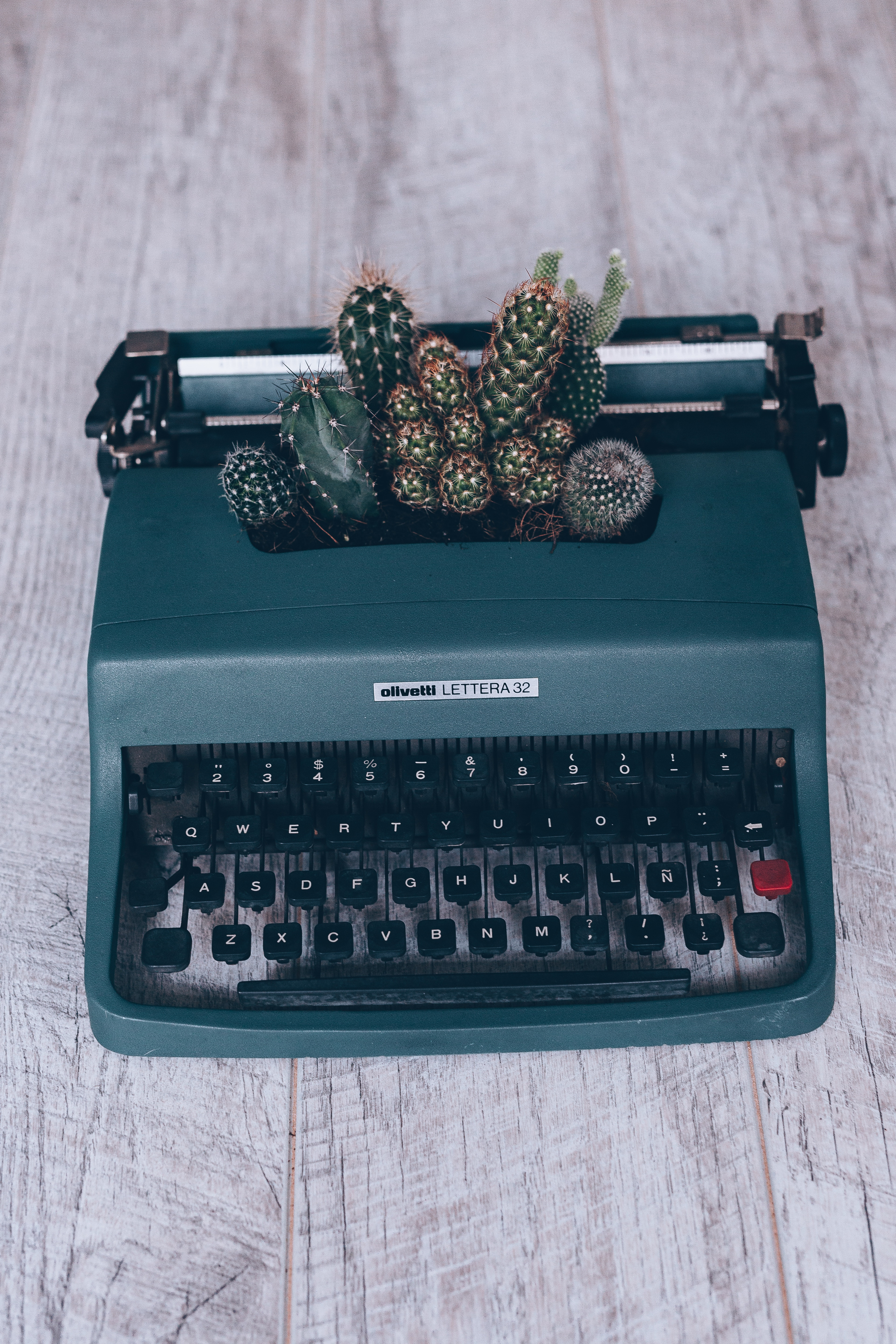 dark teal ollvetti Lettera 32 typewriter with cactus plants in the key stroke space