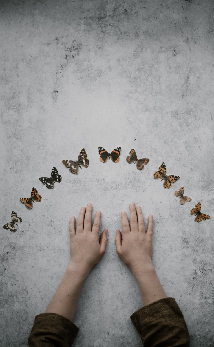 Child's forearms and hands palm down on a mottled grey surface with an arc of different brown shaded butterflies arranged above.