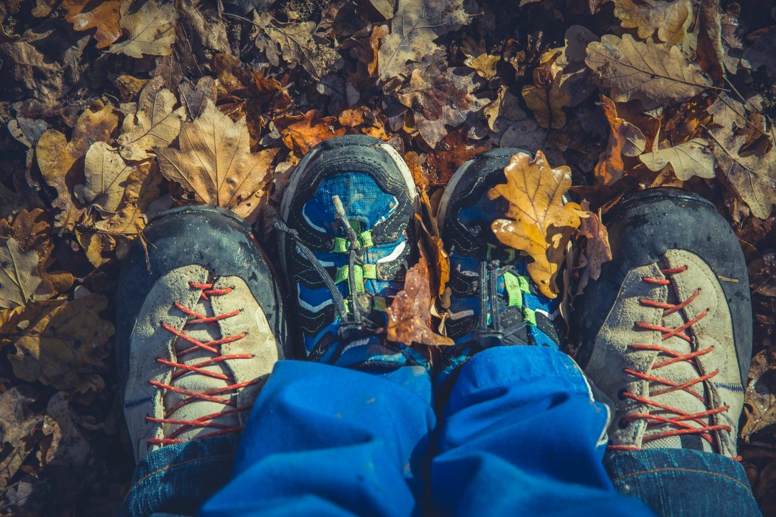 child shoed feet between adult shoed feet, standing on fall leaves