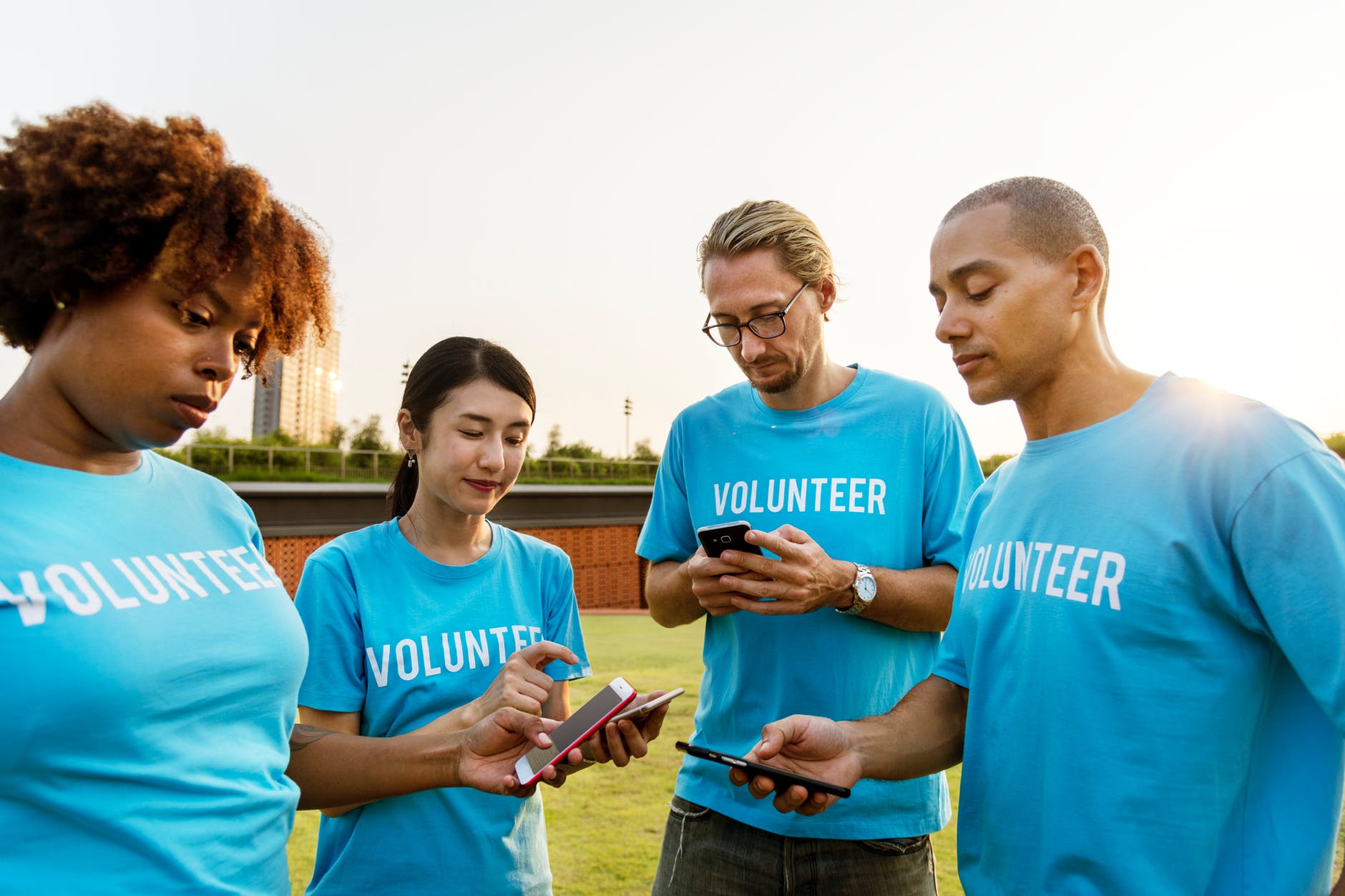 four adults in blue Volunteer shirts looking at their phones while standing in a green space